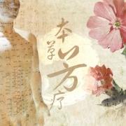 medicina-cinese-duecieli-torino